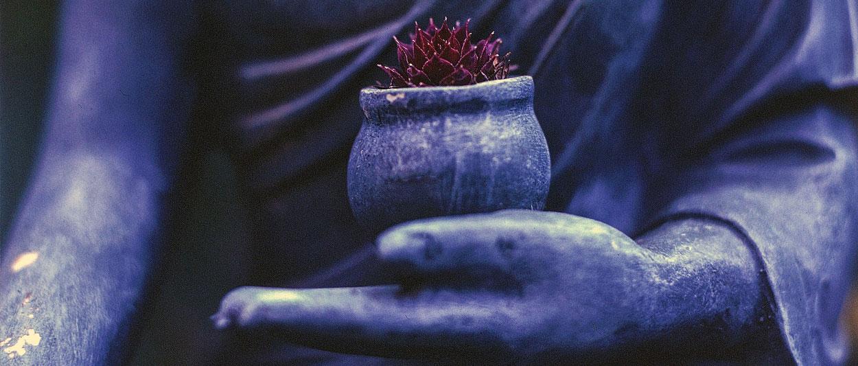 Tibetan buddhist meditation classes Brighton